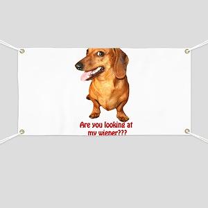 Looking at My Wiener Dachshun Banner
