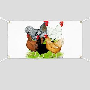 Sex-link Chicken Quintet Banner