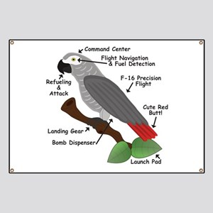 Anatomy of an African Grey Parrot Banner