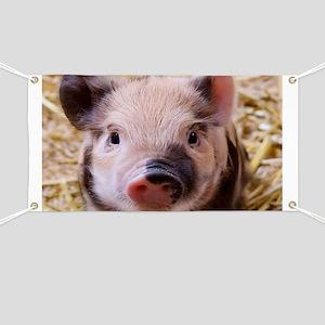 sweet little piglet 2 Banner
