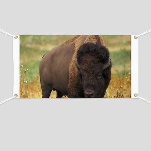 American Bison Banner