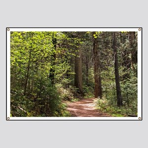 Forest Trail Banner