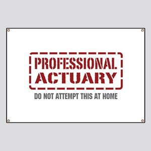 Professional Actuary Banner