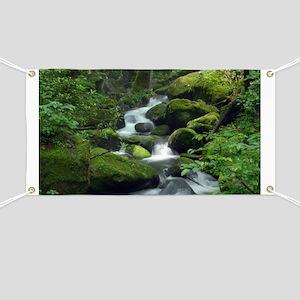 Summer Forest Brook Banner