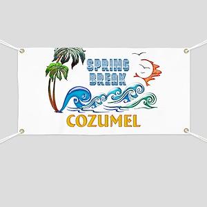 3D Palms Waves Sunset Spring Break COZUMEL Banner