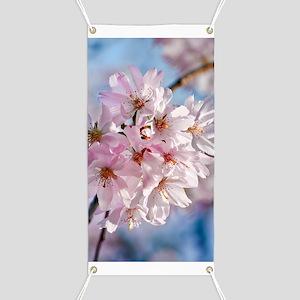 Japanese Cherry Blossoms Banner
