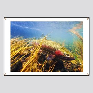 Rainbow Trout - Fly Fishing Banner