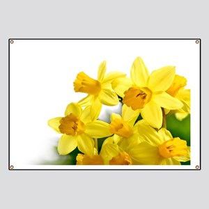 Daffodils Style Banner