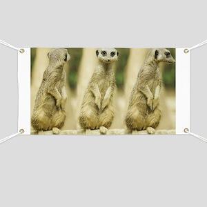 Sweet Meerkat Banner