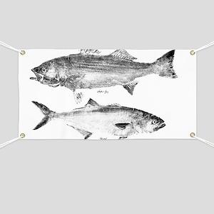 striperand bluefish Banner