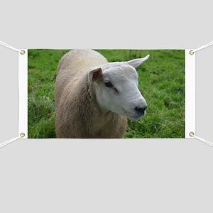 Cuddly Lamb Banner