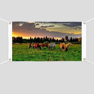 Horses Grazing Banner