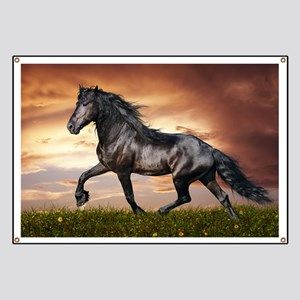 Beautiful Black Horse Banner