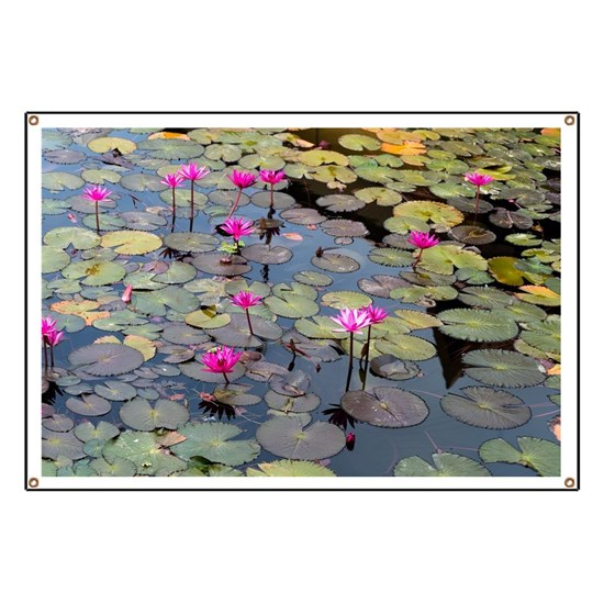 Red Lilies in Pond