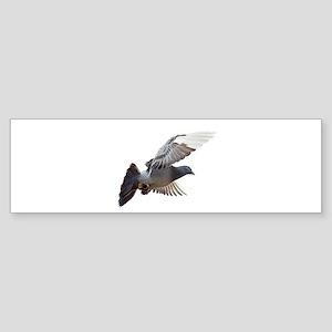 pigeon fly to love joy peace Bumper Sticker