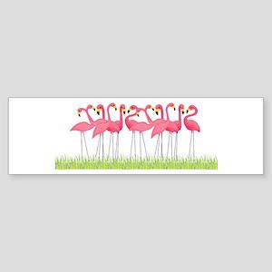 Cuban Pink Flamingos Bumper Sticker