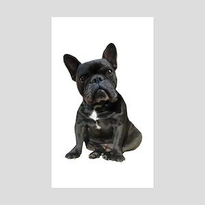 French Bulldog Puppy Por Sticker (Rectangle 10 pk)
