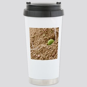 Bee pollen basket, SEM Stainless Steel Travel Mug
