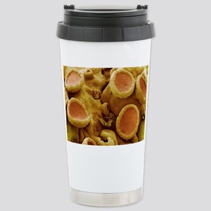 Lichen, SEM Stainless Steel Travel Mug