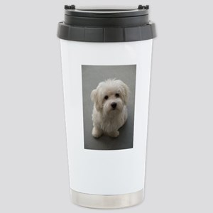 coton de tulear puppy Stainless Steel Travel Mug