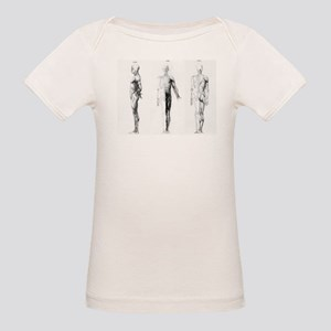 full body anatomy Organic Baby T-Shirt