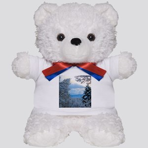 Colorado Snowy Winter Scene Teddy Bear