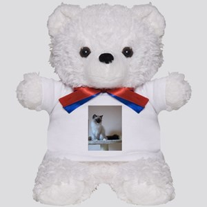 ragdoll Teddy Bear