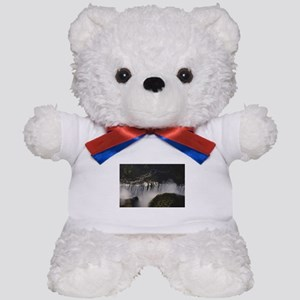 crevice waterfall victoria Teddy Bear