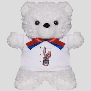 Easter Bunny Mugshot Teddy Bear
