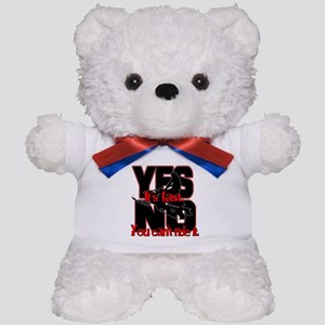 Yes It's Fast - No You Can't Teddy Bear
