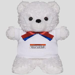 protected by gun owner Teddy Bear