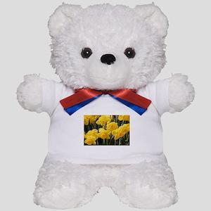 Daffodil flowers in bloom in garden Teddy Bear