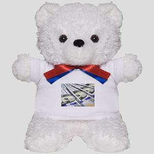 US Currency One Hundred Dollar Bill Teddy Bear