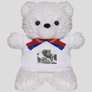 boston graphite Teddy Bear