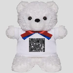 Litter crop for duvet Teddy Bear