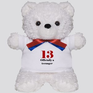 13 Teenager Teddy Bear