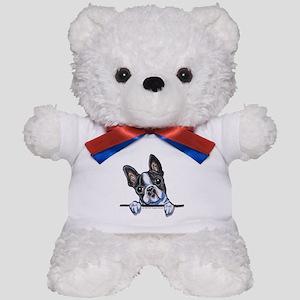 Curious Boston Teddy Bear