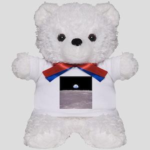 Apollo 11Earthrise Teddy Bear