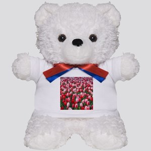 Red & Pink Tulips Holland Netherlands Teddy Bear