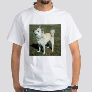 norwegian buhund full T-Shirt
