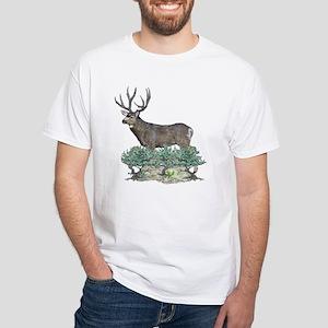 Buck watercolor art White T-Shirt