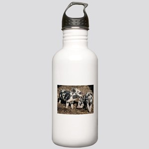 Pigs Stainless Water Bottle 1.0L