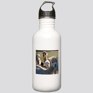 ALPACA FAMILY PORTRAIT III Water Bottle