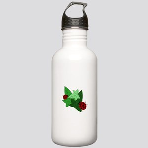 Ladybugs and Ivy Leaves Stainless Water Bottle 1.0