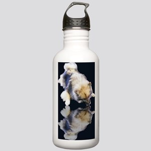 Keeshond Reflection Water Bottle