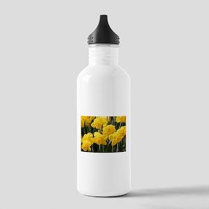 Daffodil flowers in bloom Water Bottle