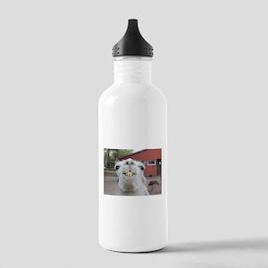Funny Alpaca Llama Stainless Water Bottle 1.0L