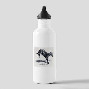 Harrison Weir - The Mule - Aesop - 1867 Water Bott