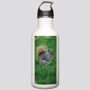 Squirrel in a Field Stainless Water Bottle 1.0L