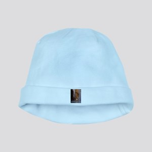 Zion Ntional Park baby hat